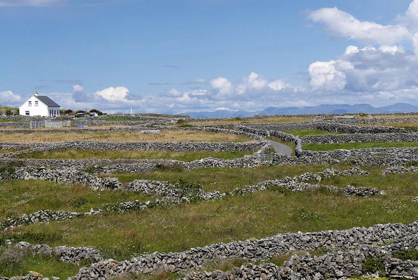 Stenen muurtjes landschap in West-Ierland