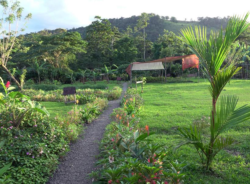Finca Amistad Cacao lodge garden