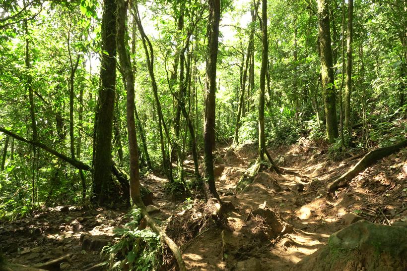 muddy path in rio celeste