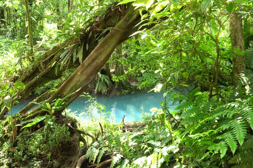 rio celeste in green jungle