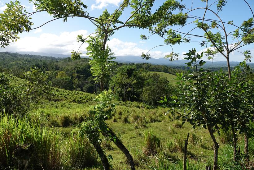 bijagua green rolling vulcano landscape