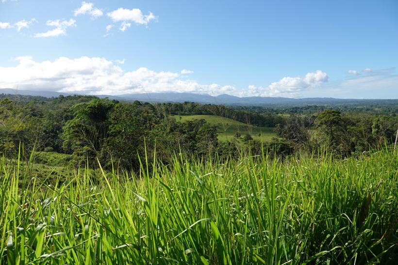 landschap tussen arenal  nuevo en guatuso