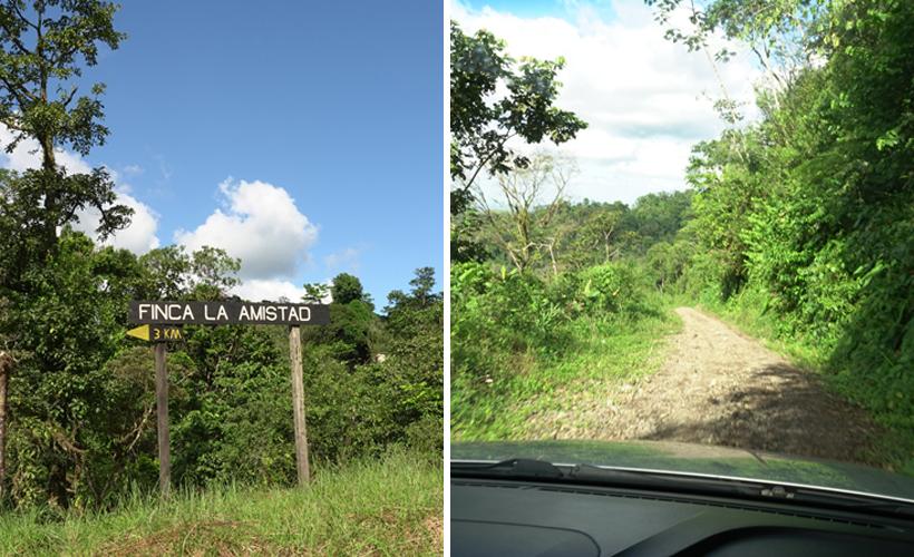 hobbelige weg naar Finca la Amistad