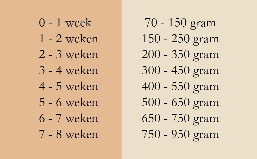 tabel gewichten kittens
