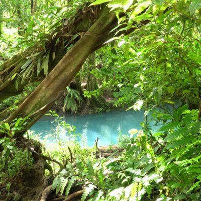Wat is de beste reisperiode voor Costa Rica?