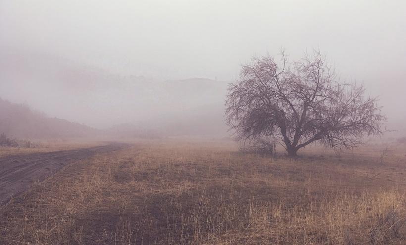 daguitstap vanuit Birmingham mist