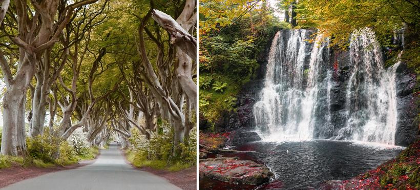 natuur in Noord-Ierland
