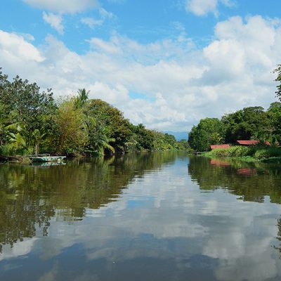 Van Drake Bay naar de mangrove en gifkikkers in Sierpe