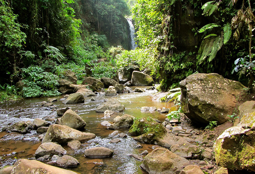 bosbaden bij een waterval
