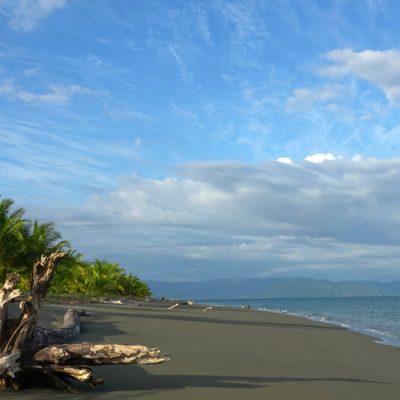 De Osa Peninsula: van Puerto Jiménez naar Carate