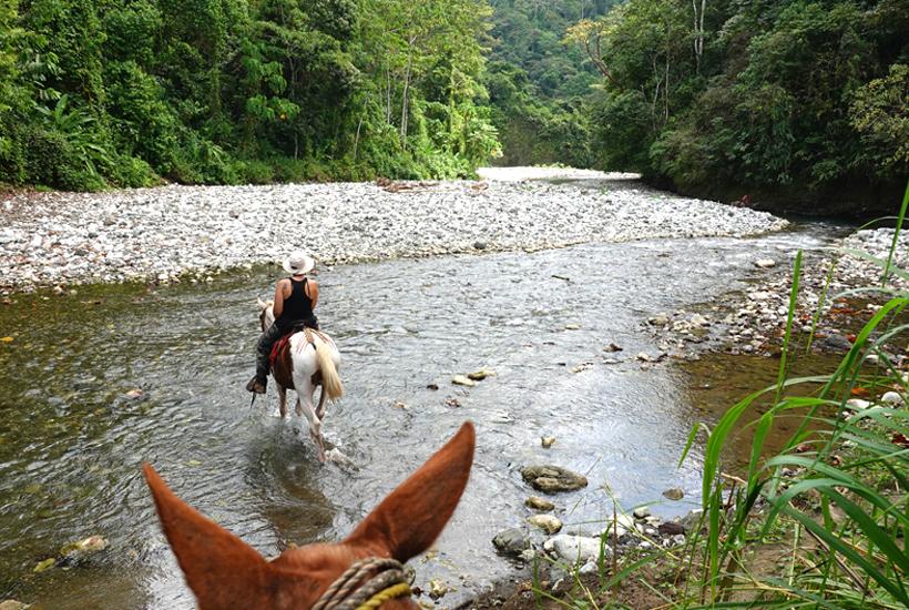 paardrijden in de Rio Tigre in Dos Brazos