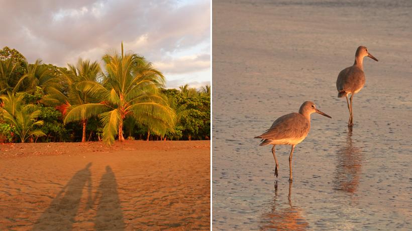 zonsondergang op het strand van Matapalo Costa Rica