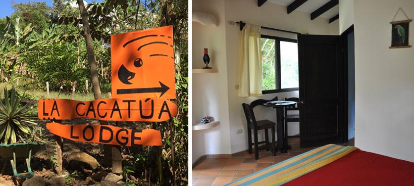 Cacatua Lodge in Uvita