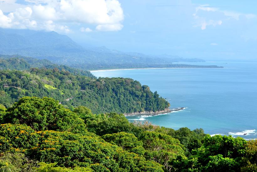 uitzicht over de groene jungle en de Costa Ballena