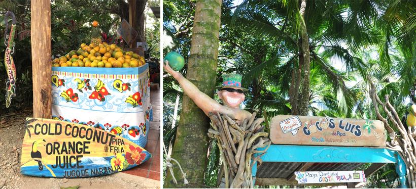 snacks in Dominical
