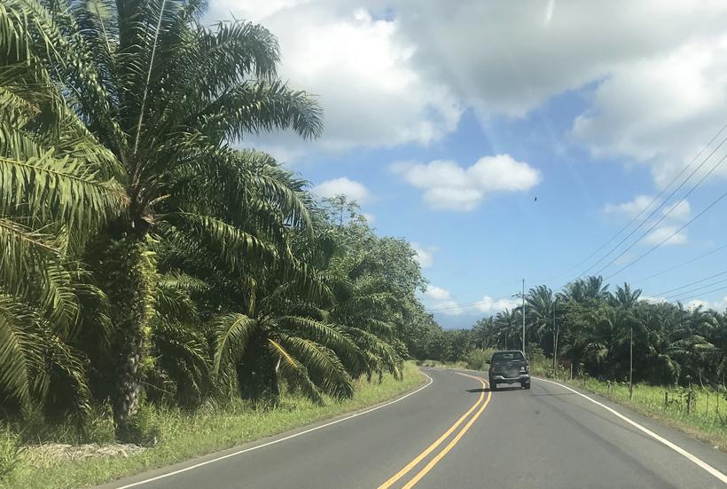 kustweg aan de central pacific