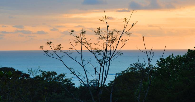 zeezicht met vogels in Ojochal