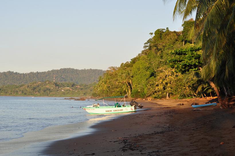 goudgeel strand van Drake Bay