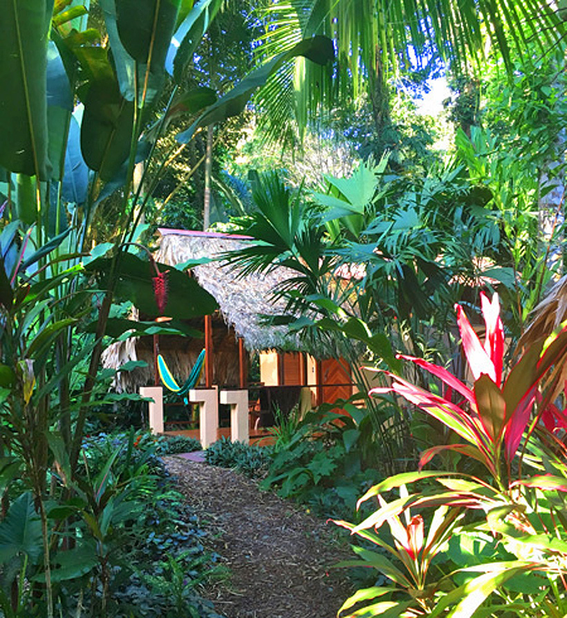 bungalow in jungle Caribe Town Puerto Viejo