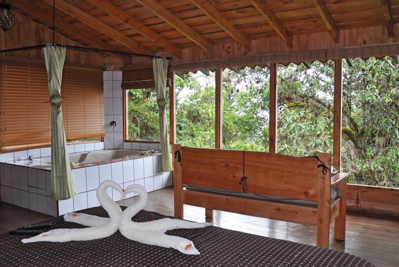 Deluxe room in Quetzal Lodge Cerro de la Muerte