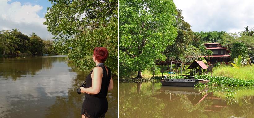 Langs de oevers van de Sierpe rivier