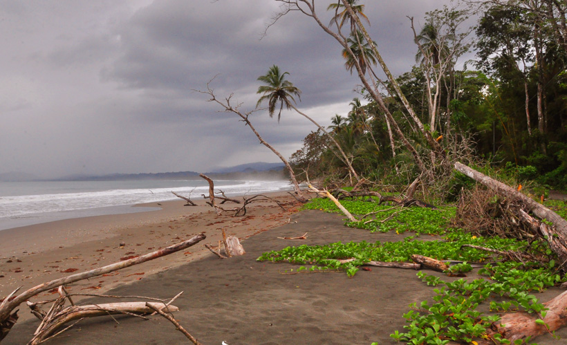 Playa vargas in Cahuita nationaal park