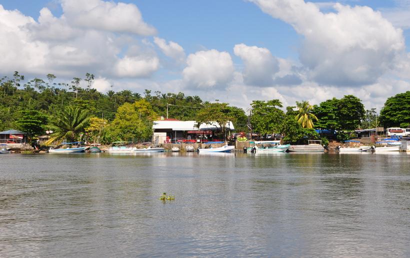 bootjes aangemeerd langs de Sierpe rivier