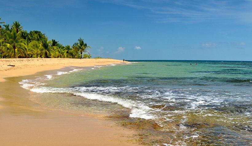 strand met palmbomen in Costa Rica