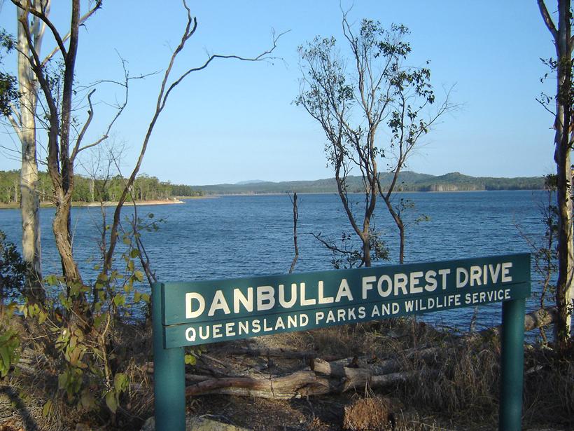Danbulla forest drive