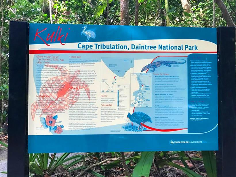 junglesafari in tropisch Queensland Daintree Nationaal Park