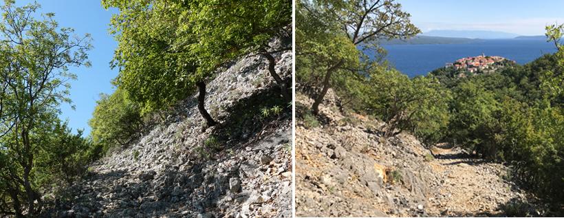 steile en rotsige hellingen in Beli