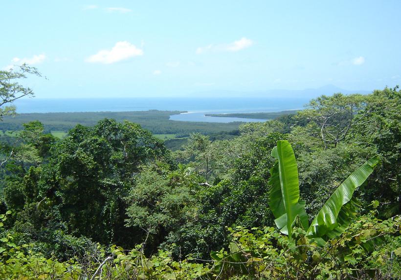 Monding Daintree rivier in tropisch Queensland