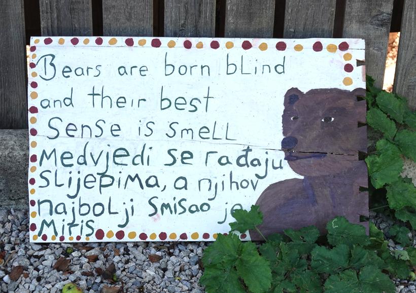 infobord beren bij geboorte blind