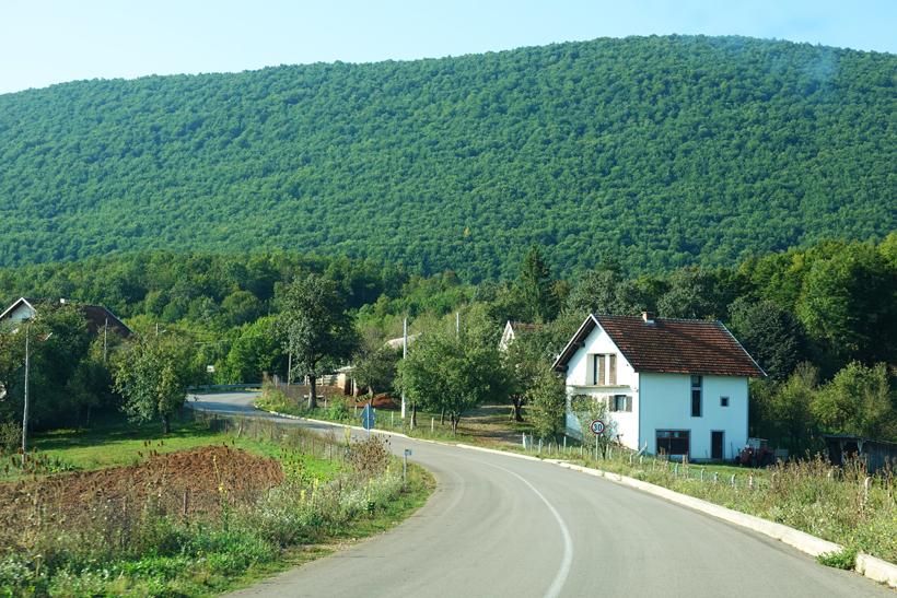 groene bergen onderweg naar Kuterevo berenopvang