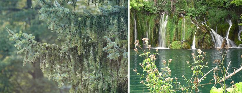 start trail entrance 2 Plitvice watervallen