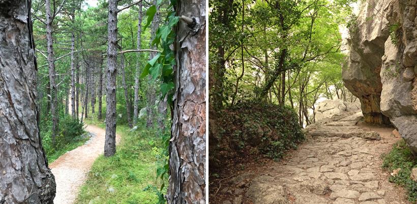 wandelen onder bomen en langs rotsen in Paklenica