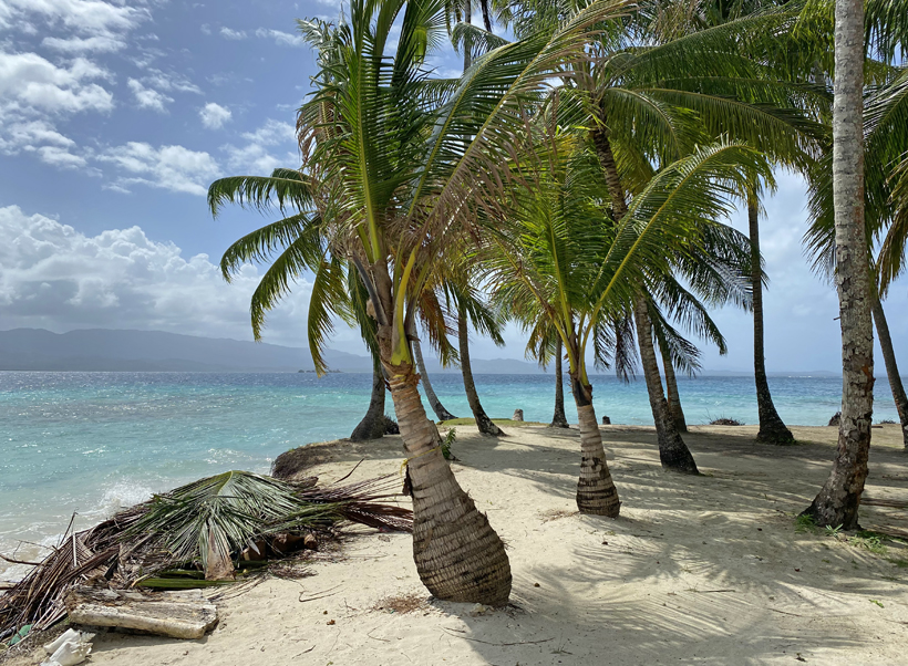 Turqouise zee en palmbomen eiland Naranjo Chico in San Blas