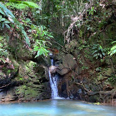 Pachamama: back to nature in het regenwoud in Panama