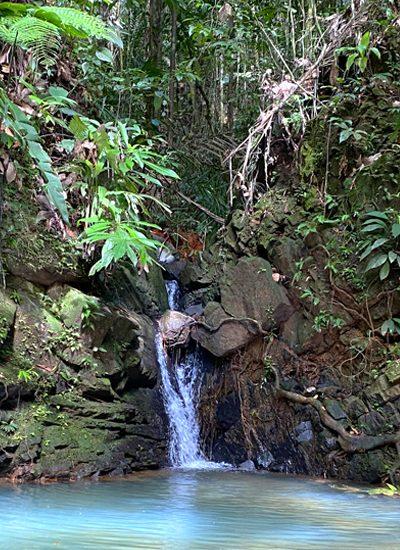 piscina natural pachamama