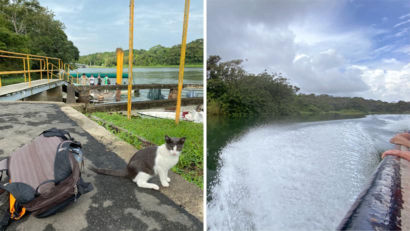 Gamboa dock naar jungle land