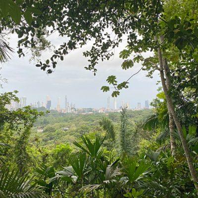 Waar vind je groen in de tropische grootstad Panama City?