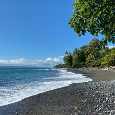 Pavones en Punta Banco in het uiterste zuiden van Costa Rica