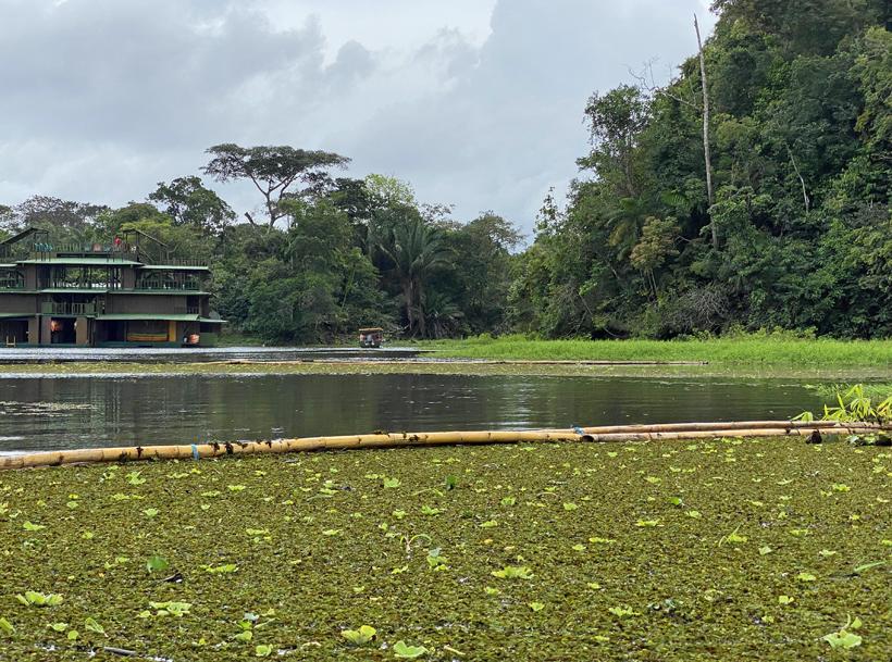 jungle land gamboa