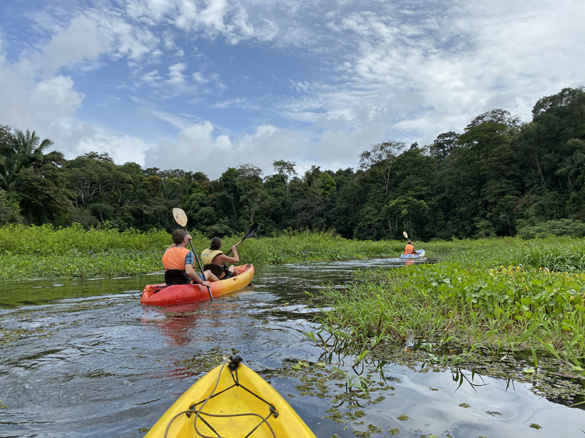 kajakken langs groene oevers bij Lake Gatun Gamboa