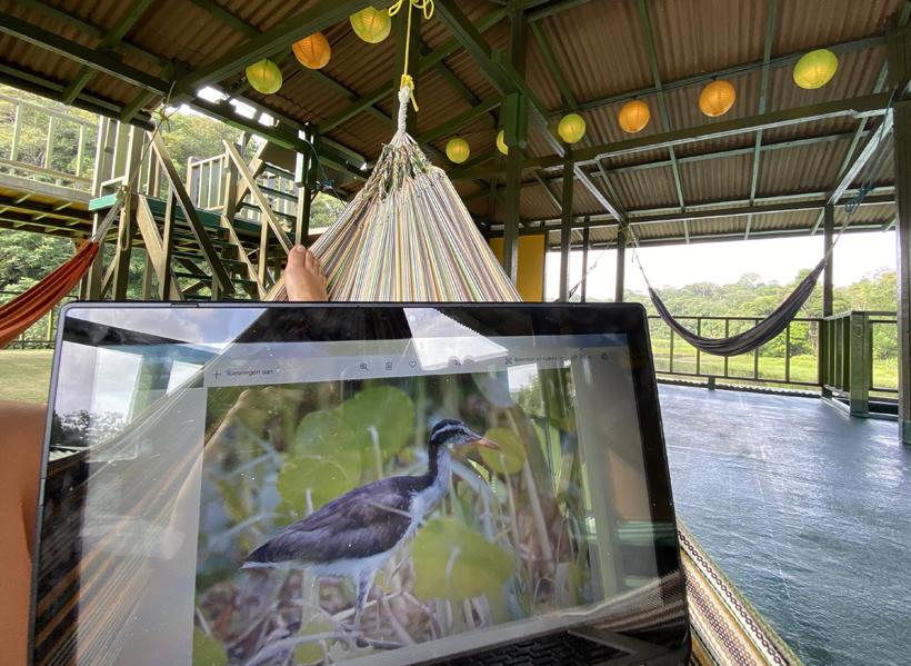 hangmat op drijvende lodge Jungle Land