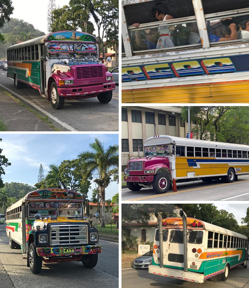 kleurrijke bussen in panama city