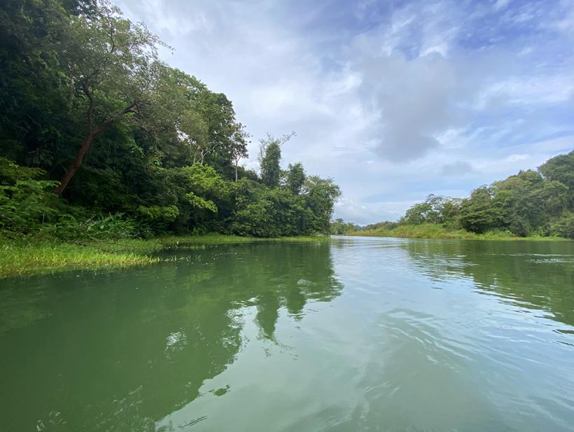 rivier bij Lake Gatun in Gamboa