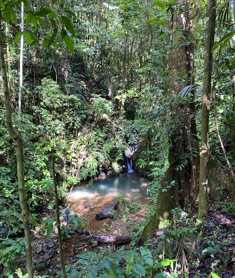 la piscina natural in Pachamama regenwoud
