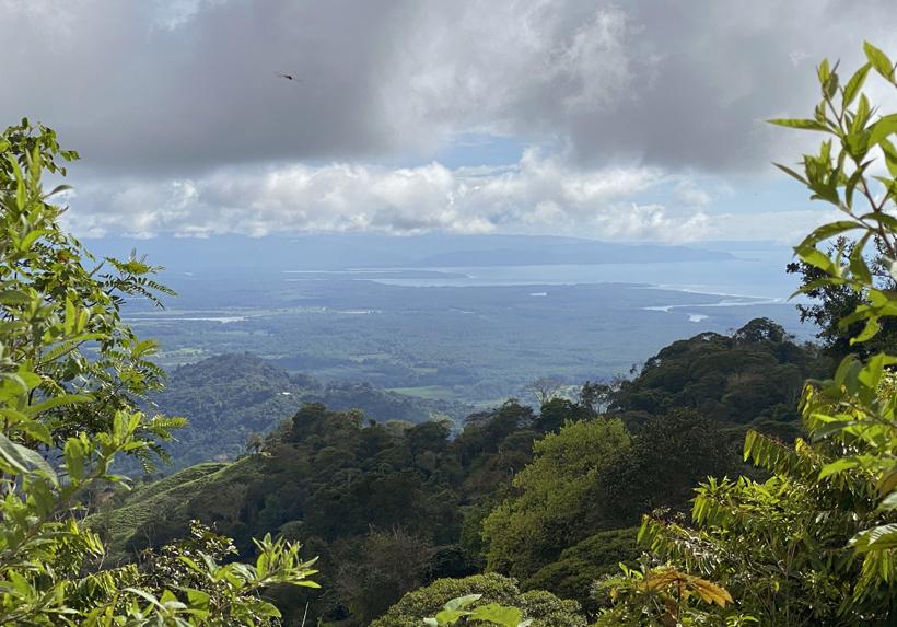 zicht op La Terraba wetlands
