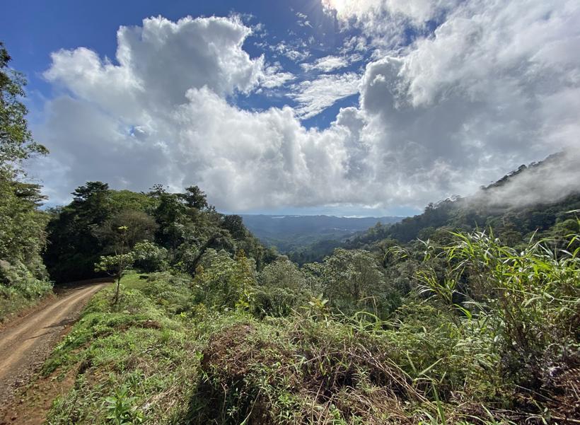 weg van ojochal naar la Trinidad